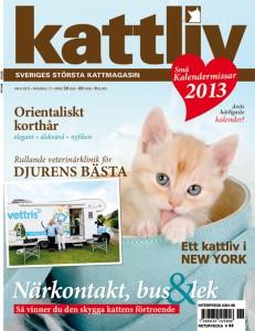 Kattliv-nr-6_2012