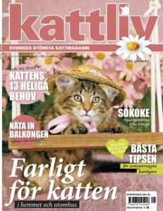 kattliv_5_webb