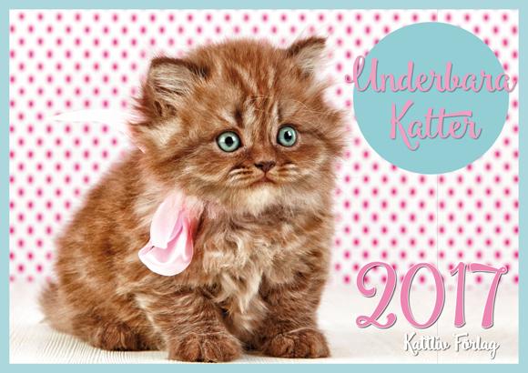Kattliv kattkalender 2017