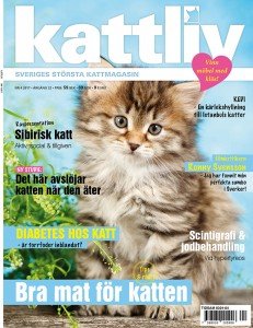 Kattliv magasin 4