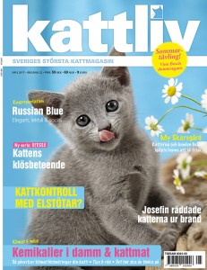 Kattliv magasin 5