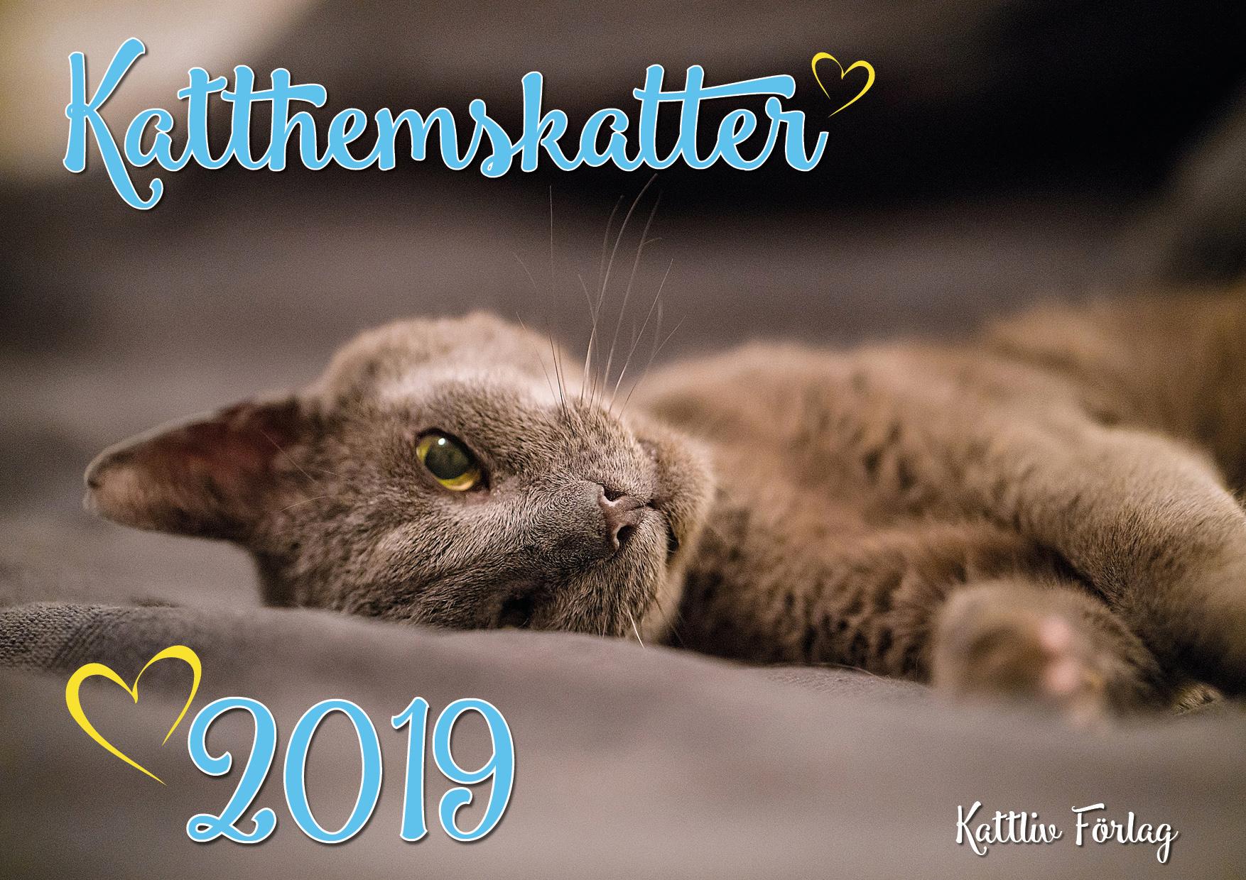 kattkalender_katthemskatter