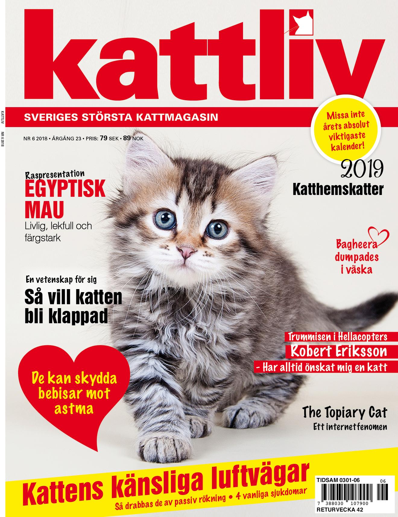 Tidningen Kattliv nr 6