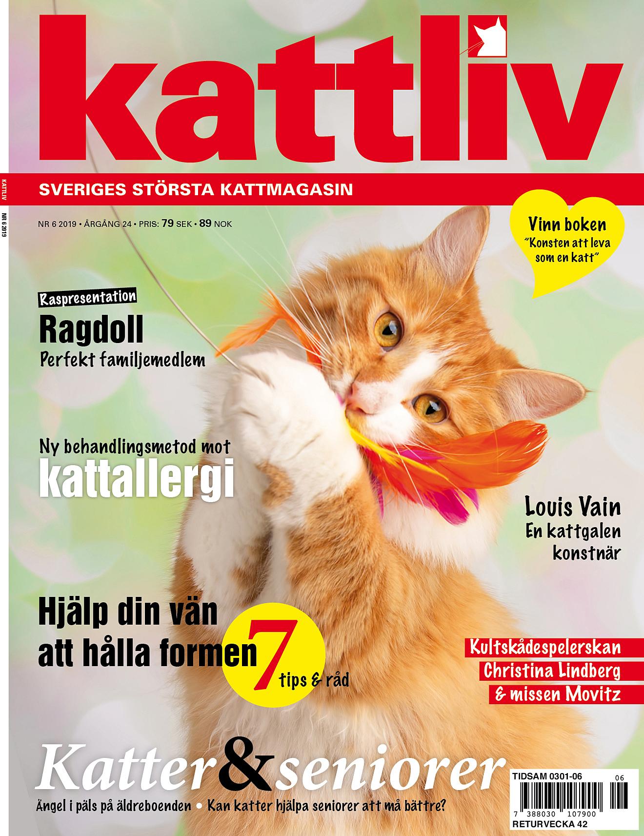 Kattliv nr 6